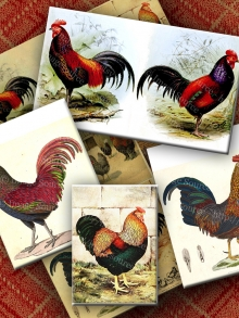 Chickens and Roosters Farmyard Digital Collage Sheet