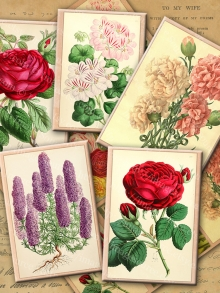 Fragrant Garden Flowers Printable Collage Sheet